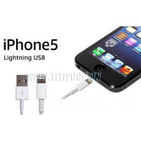 Cáp Sạc USB Lightning Iphone 5 - ipad mini - ipad 4 - Apple